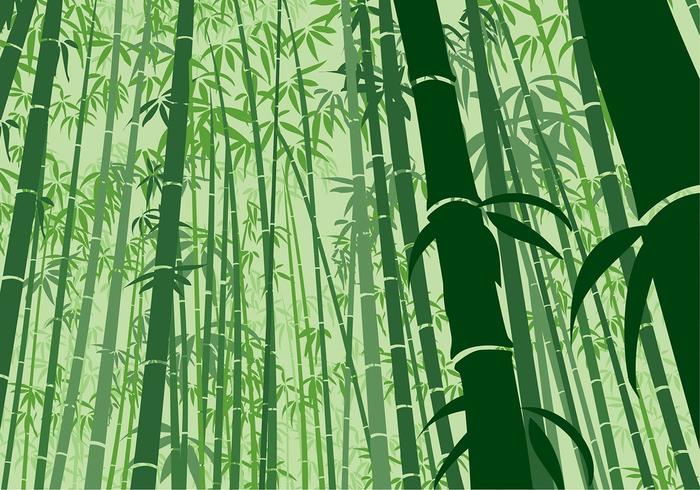 bamboo free vector art 3 329 free downloads https www vecteezy com vector art 137496 bamboo background frog angle free vector