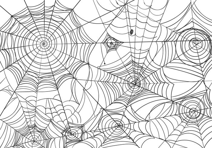 Black And White Spiderweb Vector Illustration