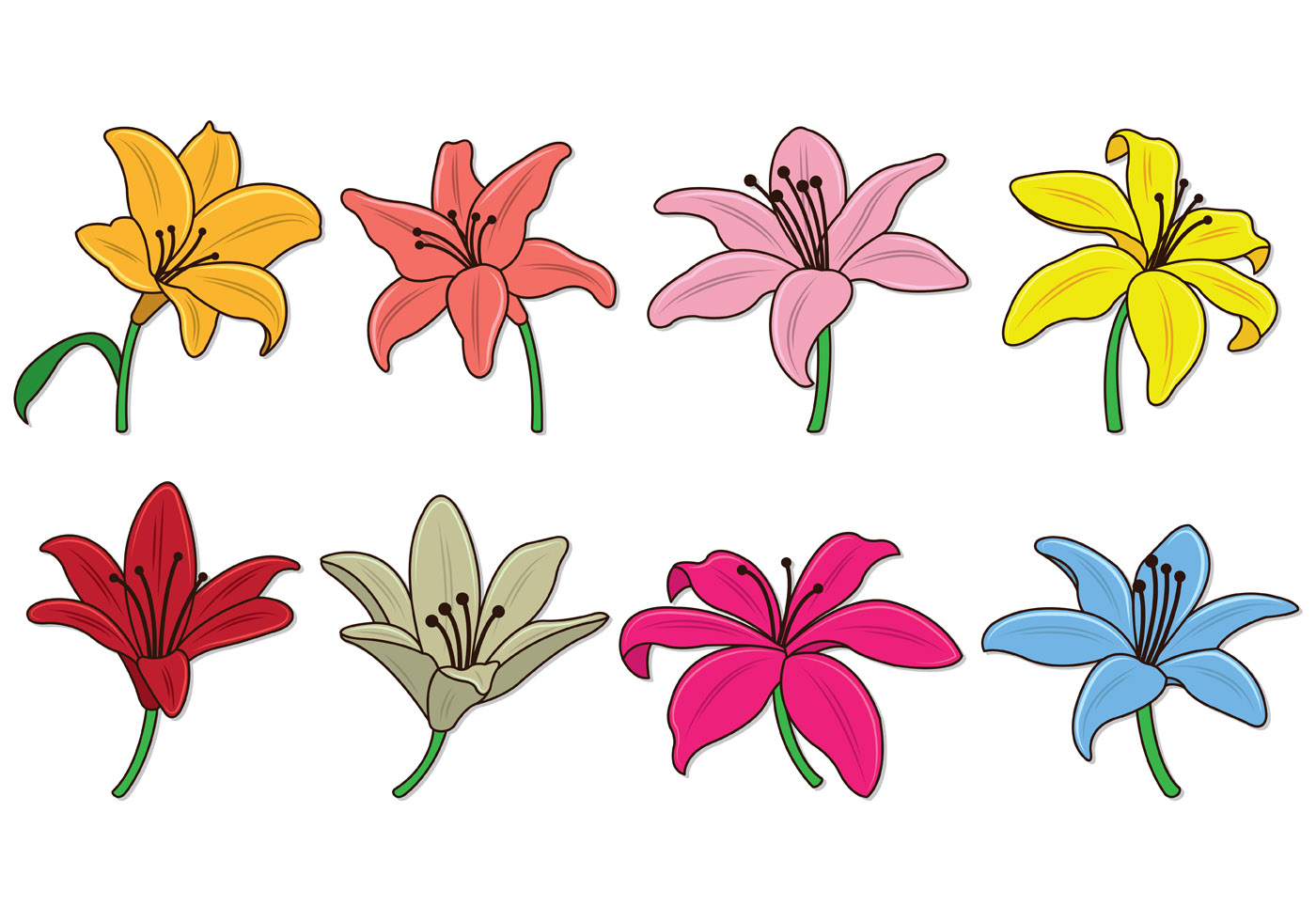 Set Of Easter Lily Vectors - Download Free Vector Art ...