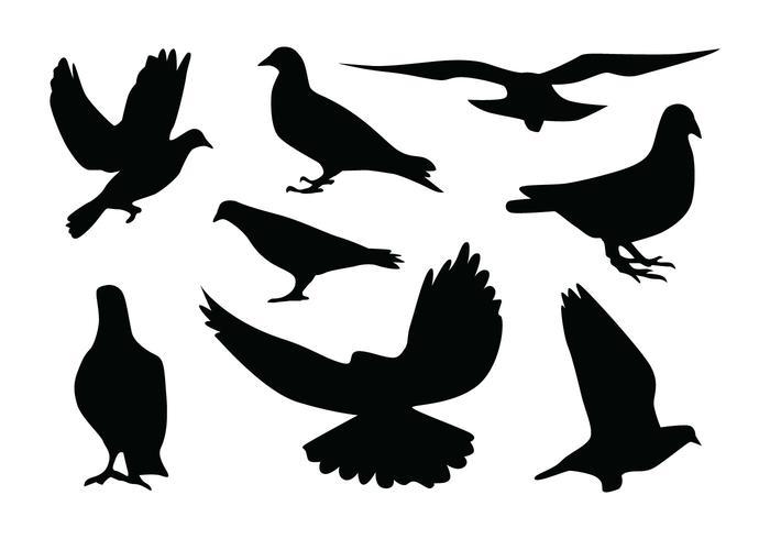 Vectores de la silueta de la paloma