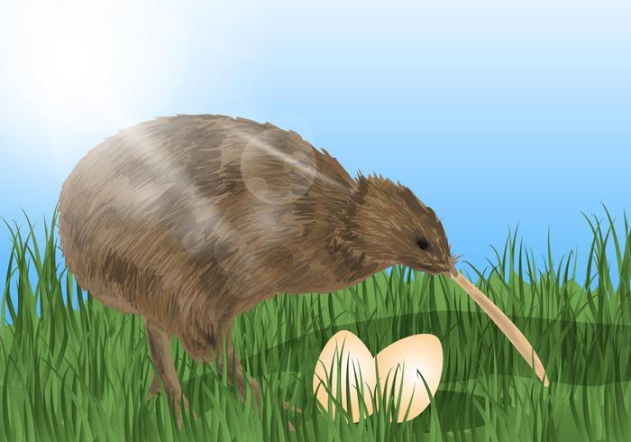 Oiseau kiwi avec les oeufs