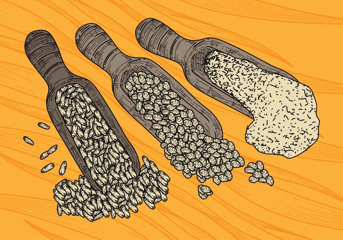 Free Oats Vector Illustration