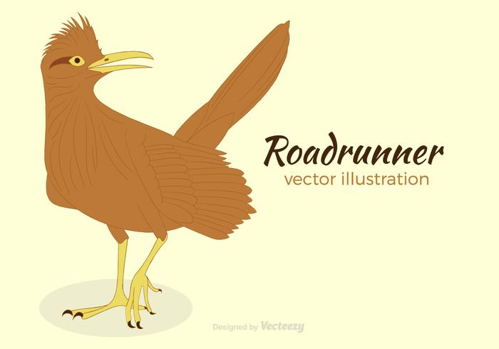 Free Roadrunner Vector Illustration