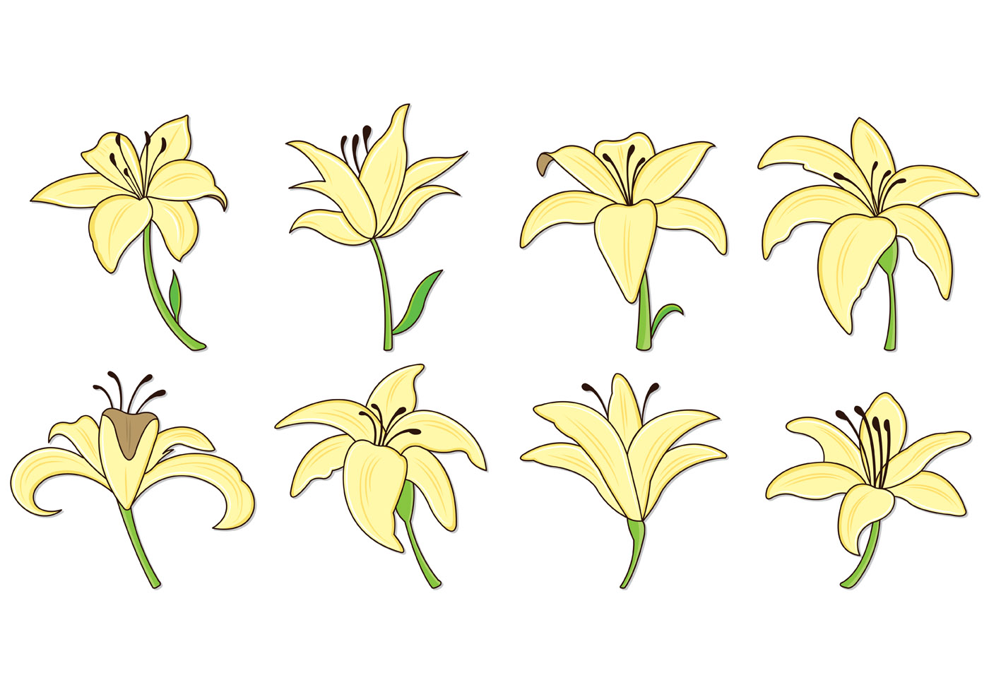 Set Of Easter Lily Icons Download Free Vectors Clipart