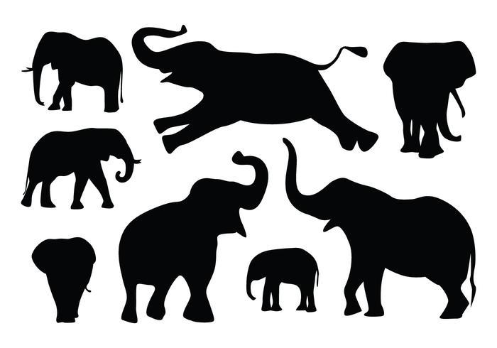 Silueta del elefante Vectores