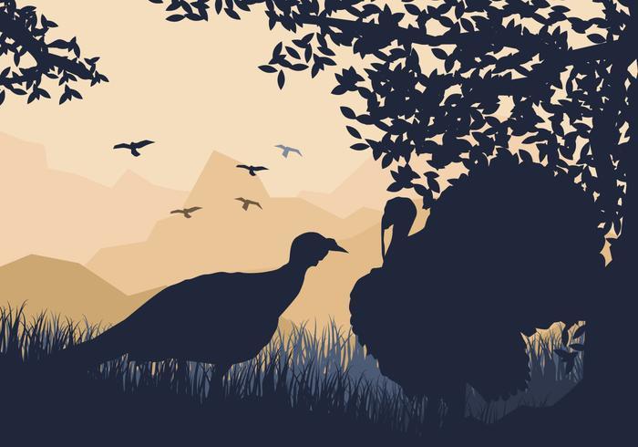 Paar Van Wild Turkey Kijk voor iets te eten