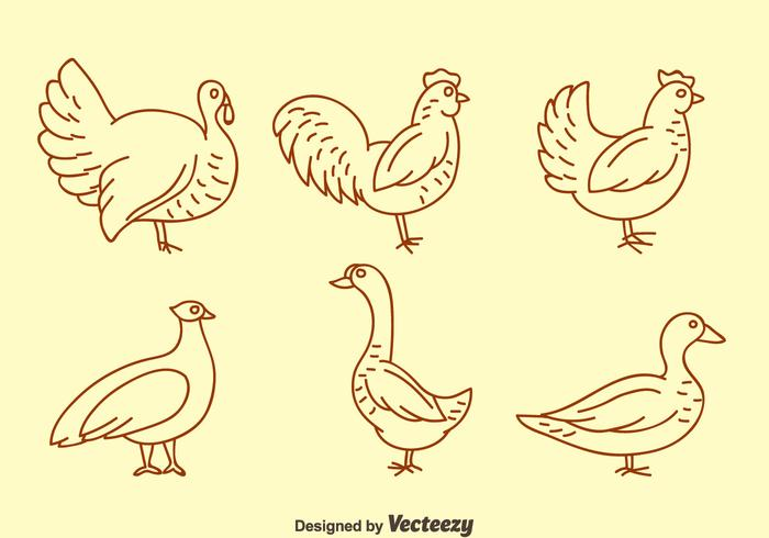 Fowl Line Icons Vector