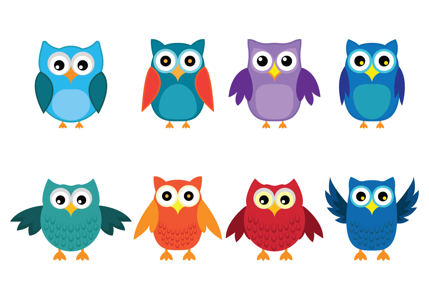 Colorful Owls In Nature