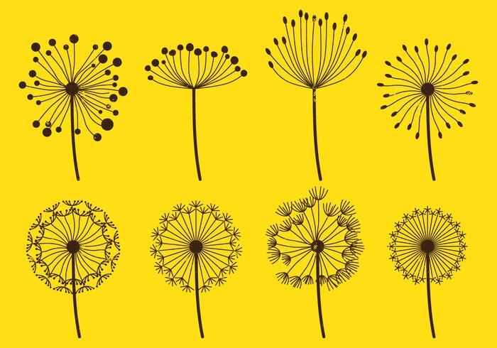 Conjuntos Dandelion Fluff
