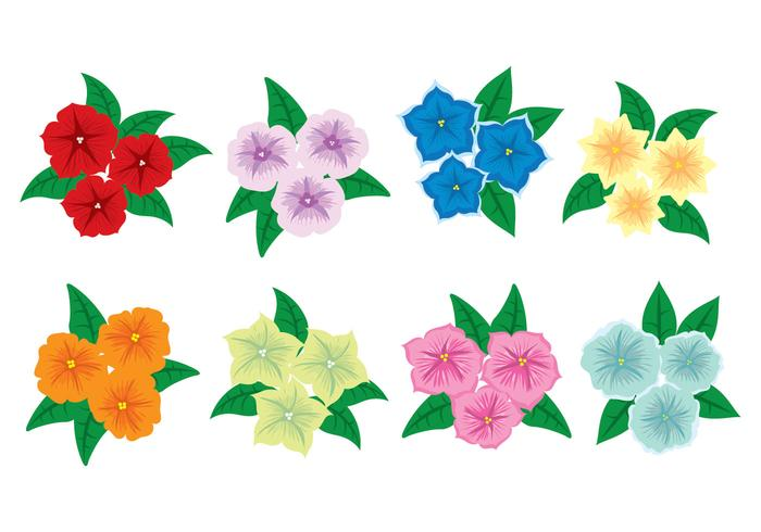 Petunia Flower Icons