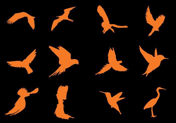Vuelo del pájaro de la silueta vectores