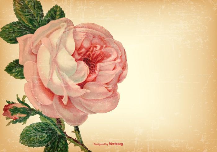 Vintages Shabby Floral Background