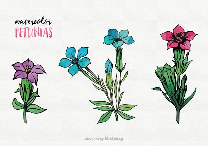 Waterverf Petunia Vector Set