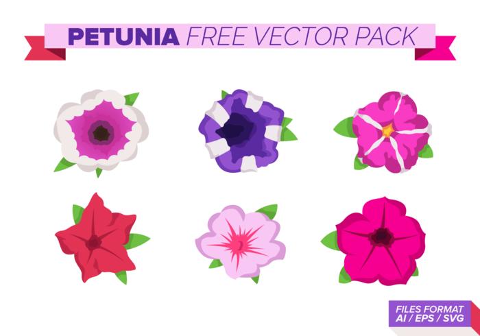 Pacchetto di vettore gratuito Petunia