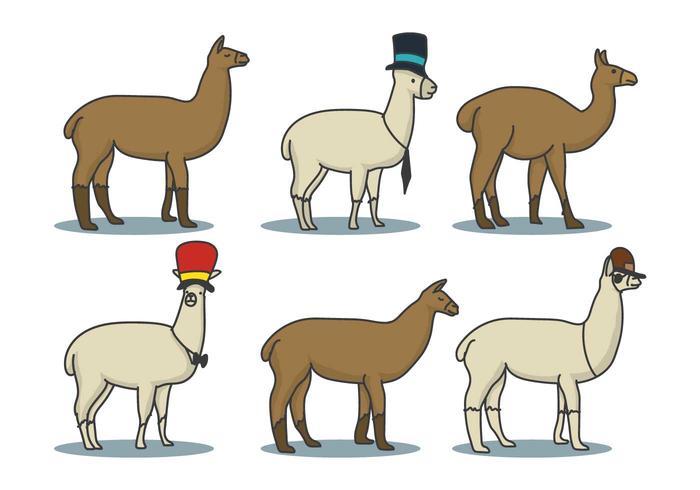 Llama Hand Drawn Illustration Set