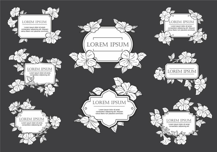 Petunia Flowers Frame Vector
