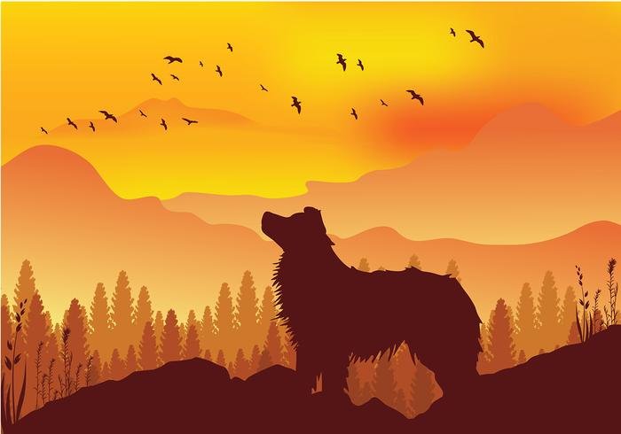 Border Collie Silhouette Gratis Vector