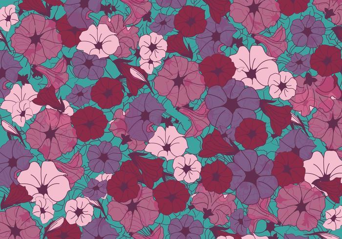 Petunia blommor vektor