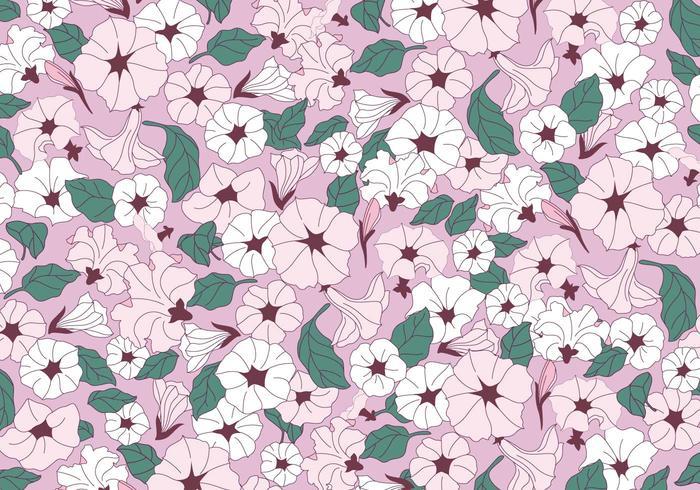 Petunia Pink Flowers Vector
