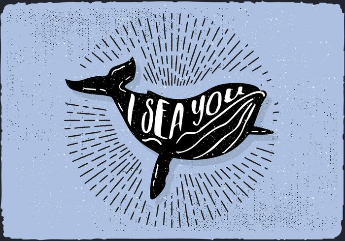 Free Hand Drawn Whale Background