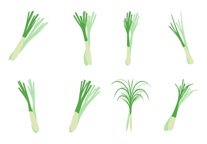 Free Lemongrass Icons Vector