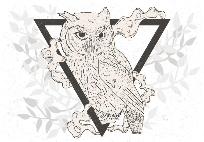 Hand Drawn Of Black And White Owl vecteur