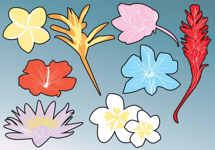 Hawaiian Flower Silhouettes vector