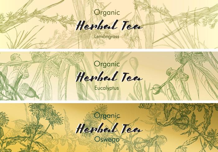 Las etiquetas de té de la vendimia