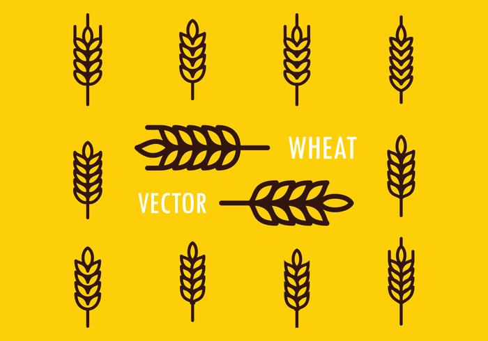 Wheat Free Vector