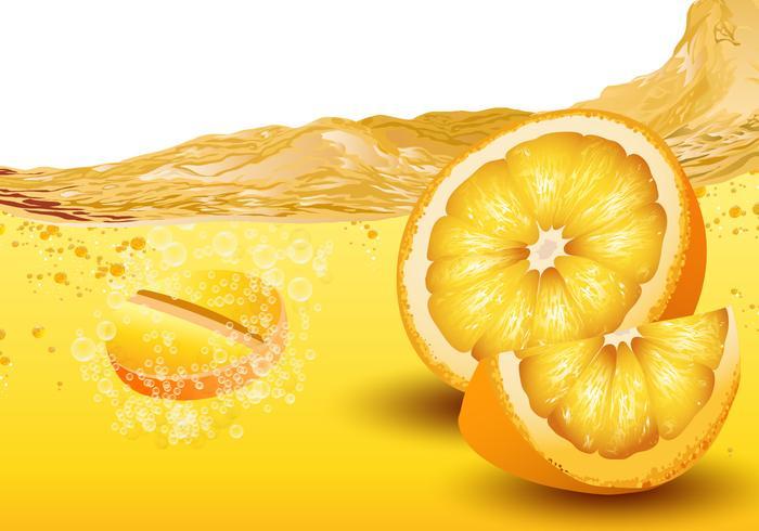 Citrus Smaksatt Brus vektor