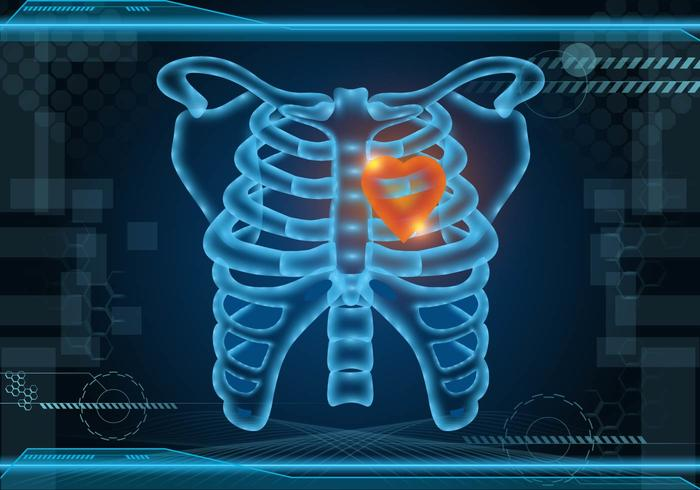Glowing Ribcage Vector Background