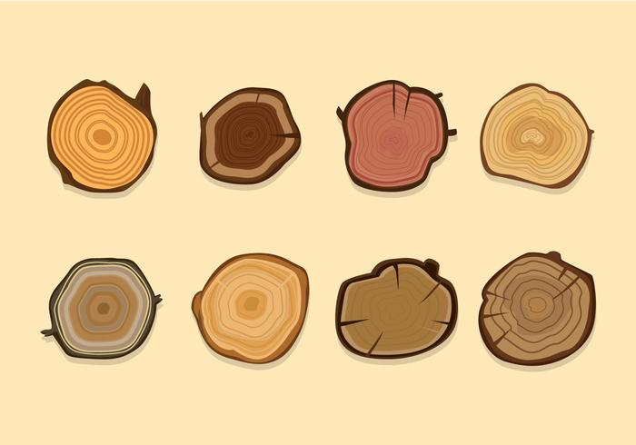 Cut and Sliced Wood Logs Vector