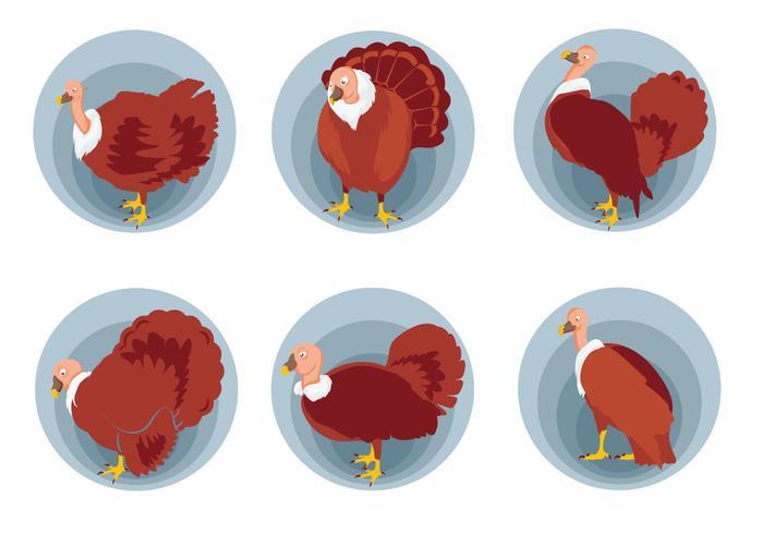 Wild turkey pose vector illustration