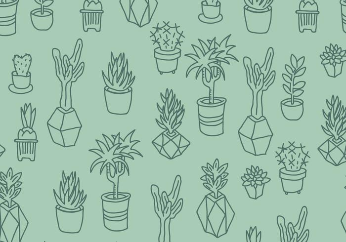 Green Cactus and Succulents Pattern