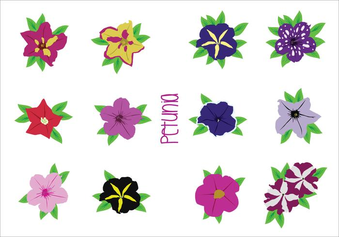 Bright Flower Vectors
