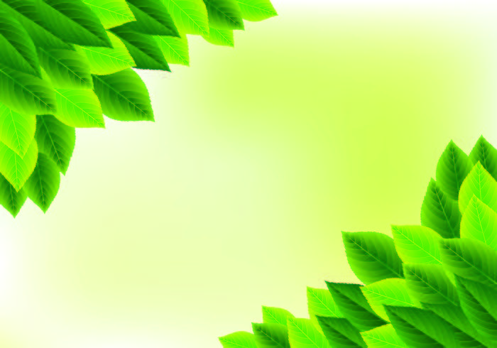 Background Of Natural Green Leaves