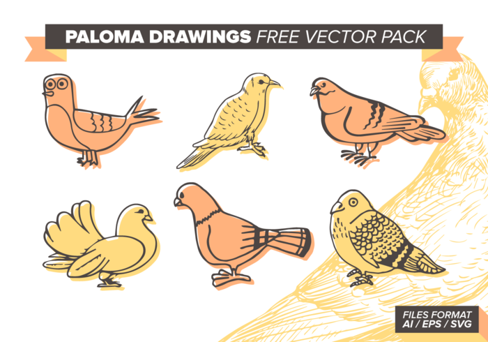 Paloma Dibujos Paquete de vectores libres