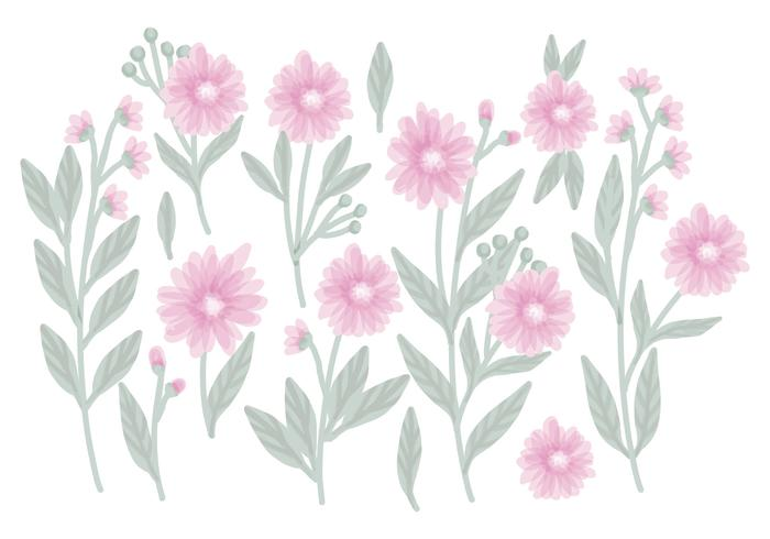 Vector Hand Drawn Floral Compositions