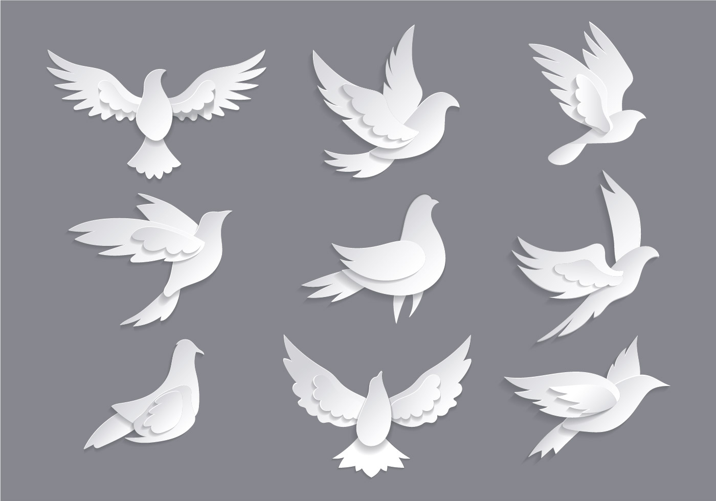 Dove or paloma symbols of peace vectors download free vector art dove or paloma symbols of peace vectors download free vector art stock graphics images buycottarizona