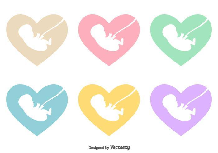 Vector Foetus Binnen Een Hart icoon