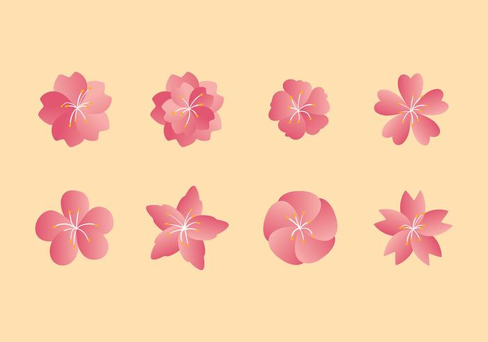 Peach Blossom Set Free Vector