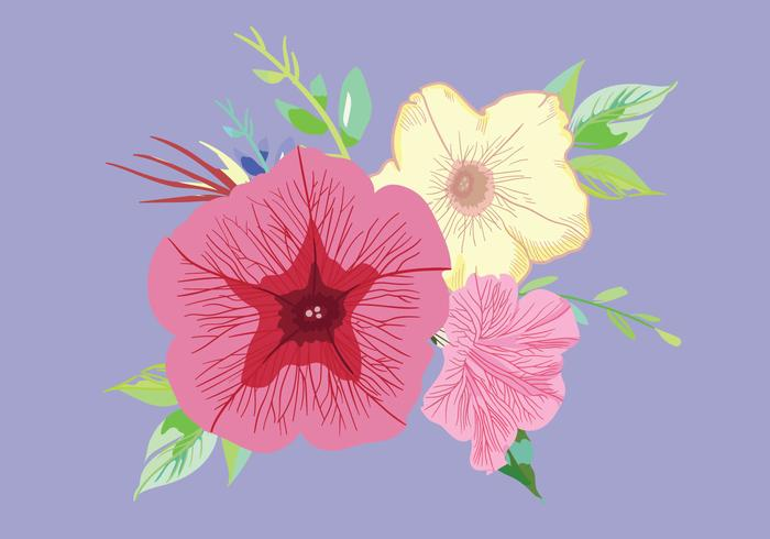 Petunia Bouquet Vector