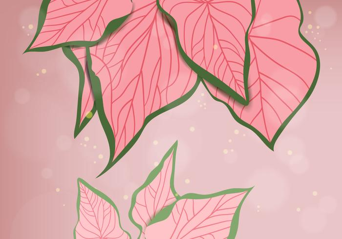 Pink Leaves Background vector