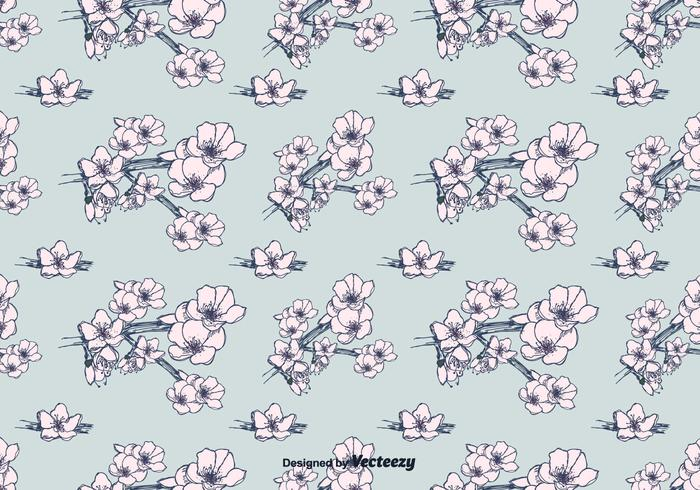 Hand Drawn Peach Blossom Pattern Vector