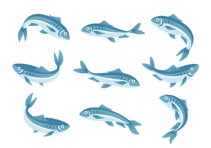 Sardinha Icons Vector