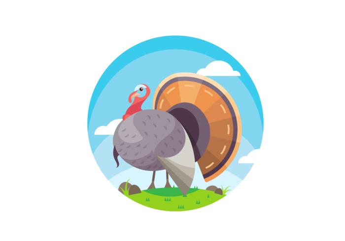 Amazing Wild Turkey Scene Vector
