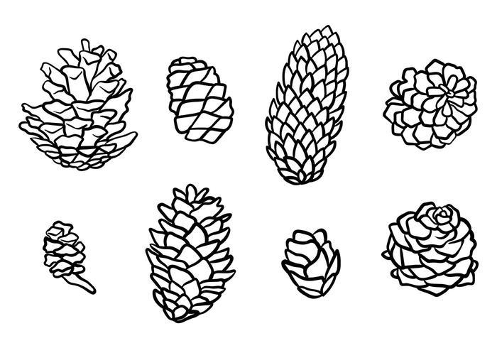 Libre de conos del pino de vectores iconos