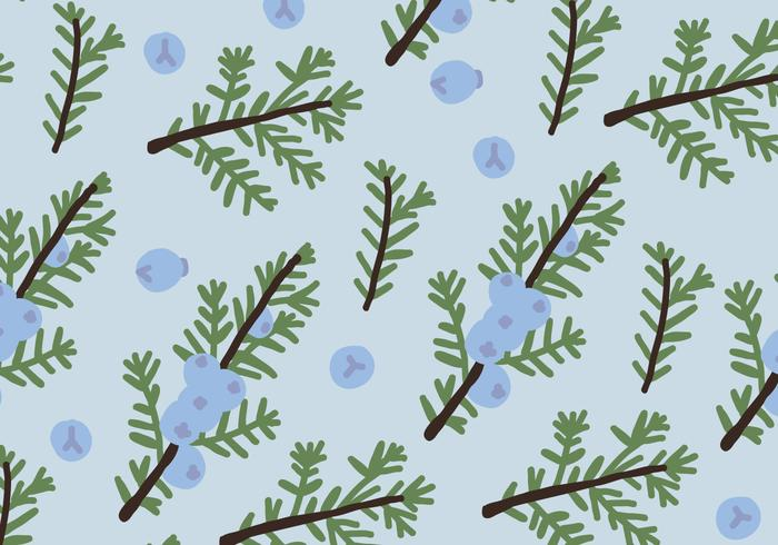 Blue Juniper Pattern
