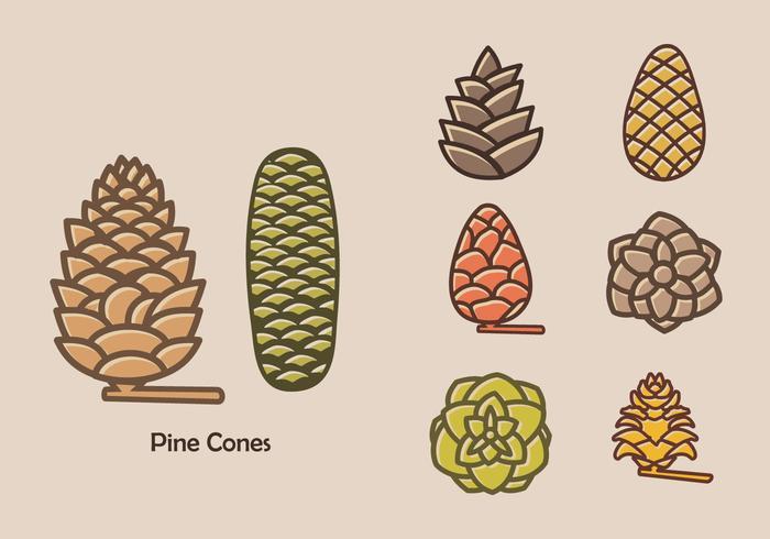 Colorful Pine Cones Vector Icon