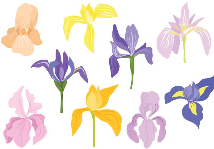 Clasificado en colores pastel Iris Vectores